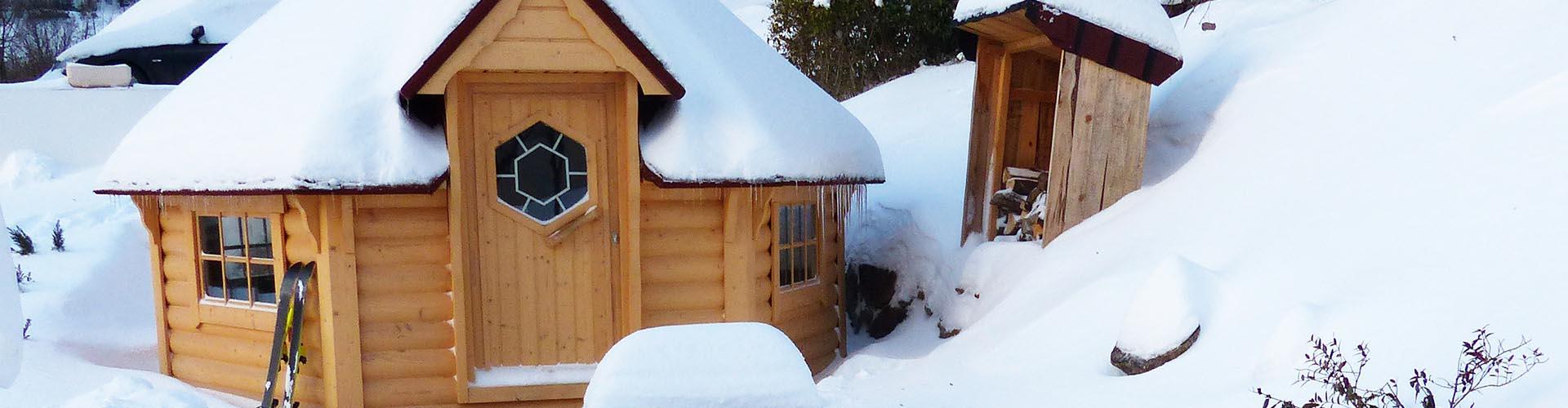 Construire Un Sauna Finlandais plus que pro